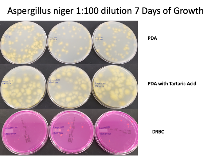 Aniger 1-100 dilution 7 days-1