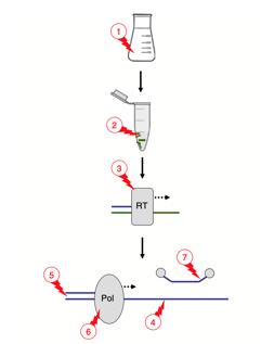 PCR-inhibitors